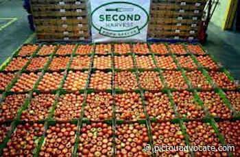 Empire, Second Harvest form tasty partnership - pictouadvocate.com