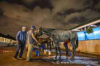 Trainer Brad Cox optimistic headed into Kentucky Derby