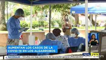 Aumentan casos de COVID-19 en Dolega y Bugaba - TVN Panamá