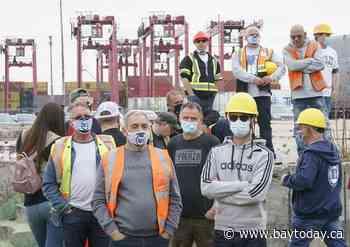 Senate passes legislation to force striking Port of Montreal employees back to work
