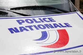 Brie-Comte-Robert : la police interrompt les préparatifs d'une rixe entre jeunes - Le Parisien