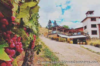 Naramata winery helps hurting hospitality workers – Penticton Western News - Penticton Western News