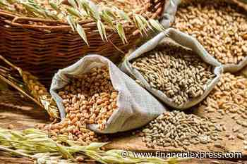 Govt sets record target to raise foodgrain production by 2% during 2021-22