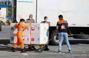 Vacinação contra a Covid-19 é suspensa em Governador Valadares por falta de doses - G1