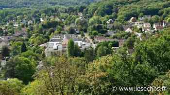 Yvelines : nouvelle élection municipale à Chevreuse, après l'annulation par le Conseil d'Etat - Les Échos