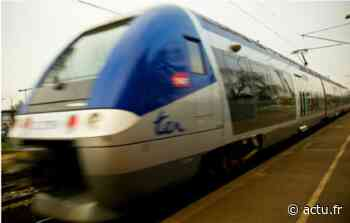 Creil : un train de marchandises en panne bloque la circulation vers Amiens - actu.fr