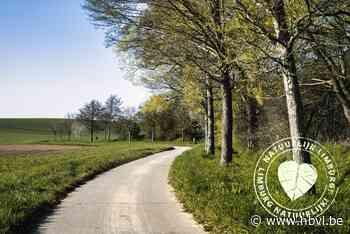 Limburgse Wandelchallenge: in het spoor van Jan Zonder Vrees door Herstappe - Het Belang van Limburg