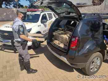 Polícia apreende mais de meia tonelada de maconha em rodovia de Palmital - G1