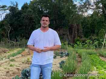 Iniciativa de horta escolar trabalha empreendedorismo rural em Fraiburgo - Economia SC
