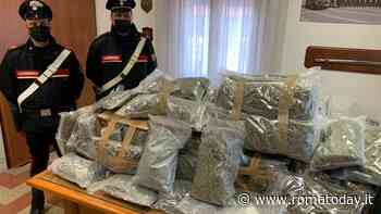 Il troppo carico gli abbassa l'assetto dell'auto, corriere fermato in autostrada con 60 chili di marijuana