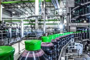 Natural One abre vagas em fábrica de Jarinu, algumas para trabalho remoto - Exame Notícias