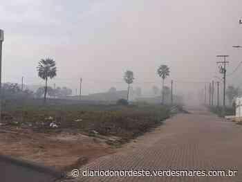 Incêndio reacende em lixão e moradores de Itaitinga amanhecem com fumaça nas casas e nas ruas - Diário do Nordeste