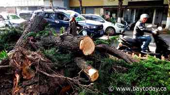 Extreme weather kills 11, injures 102 in eastern China