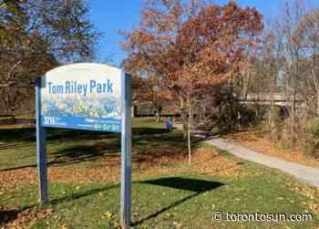 Etobicoke creek mysteriously turns bright blue - Toronto Sun