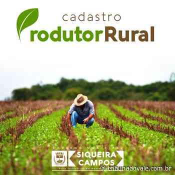 Siqueira Campos busca perfil agrícola dos produtores locais - Tribuna do Vale