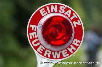 Brand in Vaihingen an der Enz - Waldstück steht in Flammen - Stuttgarter Nachrichten
