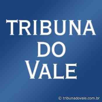 Danos causados por terceiros afetam Jacutinga, em Triolândia - Tribuna do Vale