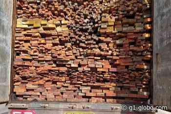 PRF apreende 51m³ de madeira transportada ilegalmente em Santa Maria do Pará - G1