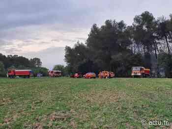 Près de Montpellier : la pinède brûle entre Jacou et Teyran, la gendarmerie enquête - actu.fr
