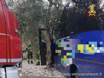 Dramma a Malcesine, autista schiacciato dal proprio bus - Daily Verona Network