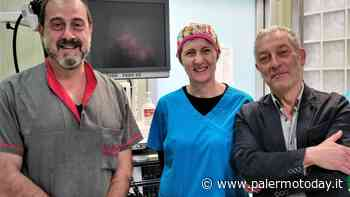 La prevenzione prima arma contro il tumore al colon retto, nelle farmacie i kit per lo screening - PalermoToday