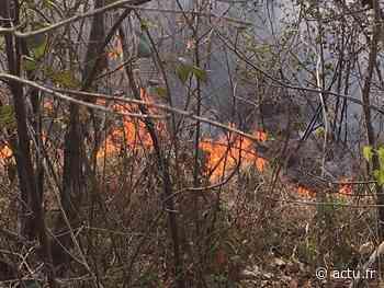 Yvelines. Jouy-en-Josas : six hectares du bois des Metz ravagés par un incendie - actu.fr