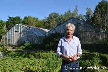 Oppositiepartij wil investeren in nieuwe kunstgrasmat voor v... (Huldenberg) - Het Nieuwsblad
