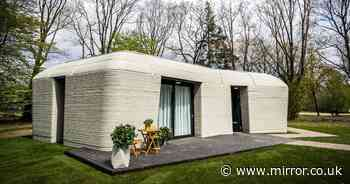 Couple move in to Europe's first 3D-printed home that looks like 'a boulder'