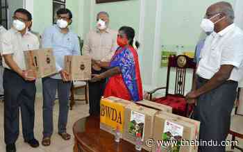 Coronavirus   Puducherry records 12 deaths for third day in a row - The Hindu