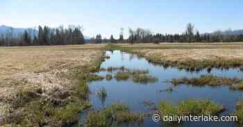 $1M awarded to restore wetlands at Swan River National Wildlife Refuge - Daily Inter Lake