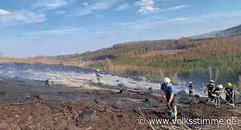 3. Großfeuer Waldbrand bei Ilsenburg hält Harzer Feuerwehren auf Trab - Volksstimme