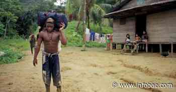 Ejército Nacional inicia el desminado militar en Alto Baudó, Chocó - infobae