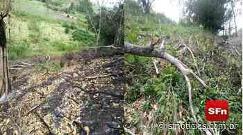 Após denúncia, polícia identifica abertura de estrada e desmatamento em Itaocara - SF Notícias