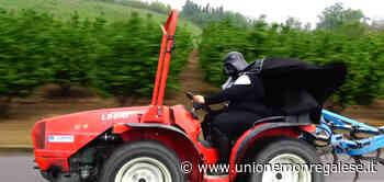 """Darth Vader, in sella ad un trattore, """"testimonial"""" dei girasoli di Farigliano - Unione Monregalese"""