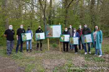 Gekleurde infoborden zijn het startsein van herinrichtingsplan Wellemeersen en omgeving Oude Dender