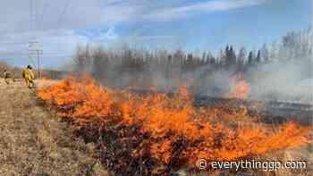 Wildfire hazard moderate in Grande Prairie Forest Area - EverythingGP
