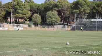Tamponi tutti negativi, ritorno agli allenamenti per il Follonica Gavorrano - IlGiunco.net - IlGiunco.net