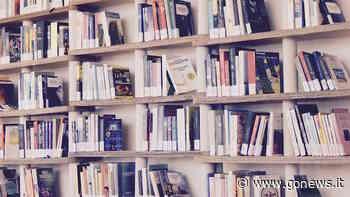 Servizio Civile in biblioteca, bando per 6 volontari a Scandicci - gonews