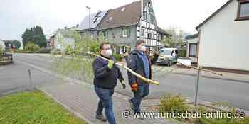 Maibäume Marke Corona: Junge Union Leichlingen liefert Birken aus - Kölnische Rundschau