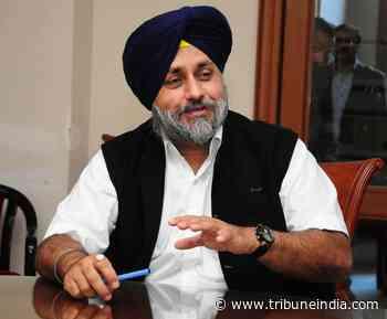 Sukhbir asks Punjab CM to review 'worsening' coronavirus situation - The Tribune India