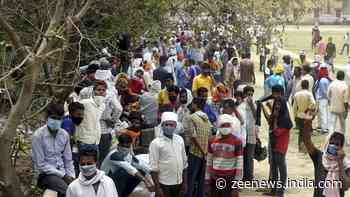 UP Panchayat Elections: Over 3.19 lakh candidates elected unopposed