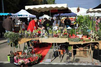 50 nuances de jardins samedi 8 mai 2021 - Unidivers