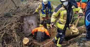 Feuerwehr rettet Hund in Lohmar - Tier landet nach Dachs-Jagd in Kanalisation - General-Anzeiger Bonn