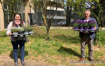 Solaro, orti biologici a scuola per favorire l'inclusione - Prima Saronno