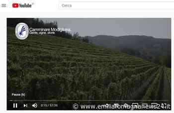 """""""Camminare Modigliana. Gente, vigne, storie"""" - Emilia Romagna News 24"""