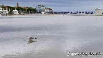 Bomba a mano in spiaggia - Il Piccolo