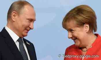 Putin's poodle! Germany will not support NATO in any future wars with Russia - expert
