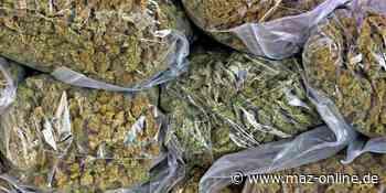 Polizei deckt Cannabis-Handel in Kleinmachnow auf - Märkische Allgemeine Zeitung