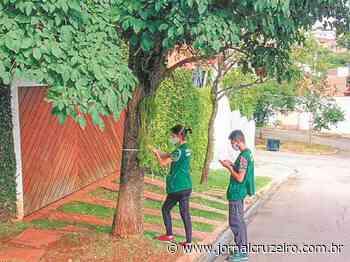 Informação Livre Prefeitura de Itu prepara catálogo de árvores existentes no município 01 de Maio de - Jornal Cruzeiro do Sul