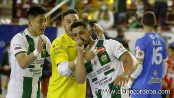 El Córdoba Futsal busca el despegue en Vista Alegre - Diario Córdoba